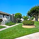 Bonita Cedars Apartments - Bonita, California 91902