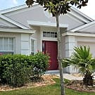 Beautiful 3 bedroom home in Palm Cove - Wesley Chapel, FL 33545