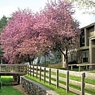 Ridgewood Village Apartments - Blacksburg, VA 24060