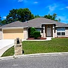 1706 Loch Leven Court - Orange Park, FL 32065