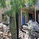 U of A Gorgeous 3 Bedroom, 3 Bath Apartment - Tucson, AZ 85719