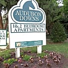 Audubon Downs Apartments - Memphis, TN 38104