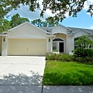 STUNNING HOME IN FISHHAWK COMMUNITY - Lithia, FL 33547