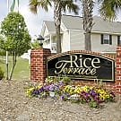 Rice Terrace - Columbia, South Carolina 29229