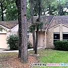 Great Starter home 3/2/2 in The Woodlands! - The Woodlands, TX 77381
