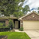 2306 HUNTER PARK CT, CONROE TX - Conroe, TX 77385