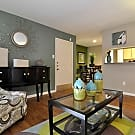 Cashel Springs Apartments - Houston, TX 77069