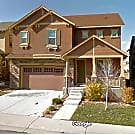 Beautiful house in sought after Highlands Ranch CO - Highlands Ranch, CO 80130