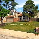 South West Two Story 3 bedroom 2 bath - Colorado Springs, CO 80906