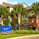 Camden Oak Crest - Houston, TX 77082