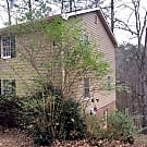 ENDLESS WOODED VIEWS! - Snellville, GA 30039