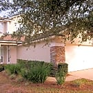 3410 Pebble Sand Ln - Orange Park, FL 32065
