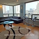 Studio, 1 bath Apartment - 440 N Wabash Ave, #3310 - Chicago, IL 60611