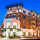 Elle of Buckhead - Atlanta, GA 30305