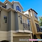 Fabulous Townhome in Perfect Location! - Houston, TX 77007
