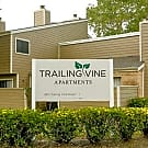 Trailing Vine Place - Spring, TX 77373