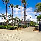 Island Palms - Edinburg, TX 78542