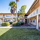 121 North Jefferson Apartment - Clearwater, FL 33755