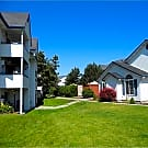 Montgomery Court Apartments - Spokane Valley, WA 99206