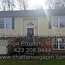 Large 2-bedroom w/ FULL unfinished basement! - Chattanooga, TN 37412