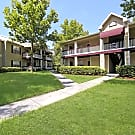 The Park at Vittoria - Orlando, FL 32808