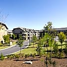 The Regency At Johns Creek Walk - Johns Creek, GA 30097