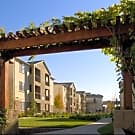 Pavona Apartments - San Jose, CA 95112