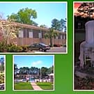 Plaza Terrace Apartments - Laurinburg, North Carolina 28352