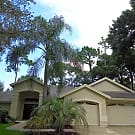 CHAPMAN MANORS 4/3 HOME W/POOL - Lutz, FL 33549