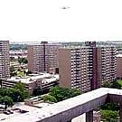 Spring Creek Towers - Brooklyn, NY 11239