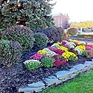 Winton Village Apartments - Rochester, NY 14623