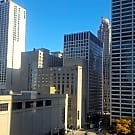 1 br, 1 bath Apartment - 440 N Wabash Ave, #1208 - Chicago, IL 60611