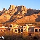 1500 East Pusch Wilderness Drive - Oro Valley, AZ 85737