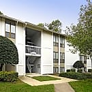 Chapel Lake Apartments - Virginia Beach, Virginia 23454