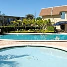 Park Pointe Apartments - Tampa, Florida 33614