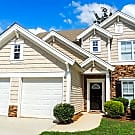 1588 Thornwick Trace - Stockbridge, GA 30281