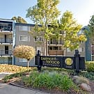 Belmont Terrace Apartments - Belmont, CA 94002