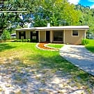 237 Blairmore Blvd - Orange Park, FL 32073