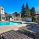 Wood Creek - Pleasant Hill, California 94523