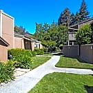 Spring Meadow Apartments - Pleasant Hill, CA 94523