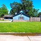 3 Bed 1 1/2 bath in Beaumont West end - Beaumont, TX 77707
