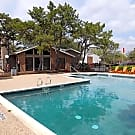 Springtree Apartments - Arlington, Texas 76011