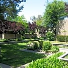 Amber Grove Apartments - Sacramento, California 95821
