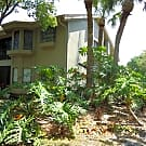 Top Floor Corner Townhome - Palm Harbor, FL 34684