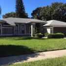 1559 Mcauliffe Lane - Palm Harbor, FL 34683