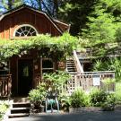 Furnished 1 Bedroom - Santa Cruz, CA 95065