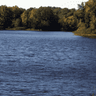 Reserve At Mill Landing - Lexington, SC 29072