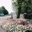 The Woodlands at Abington Station - Abington, MA 02351