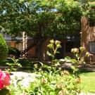 Falcon Court - Sierra Vista, AZ 85635