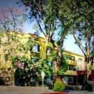 Golden Oaks - South Pasadena, CA 91030